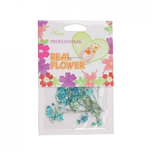Décors adhésifs fleurs bleues Sina