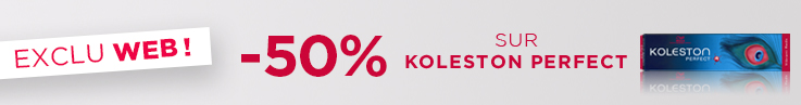 Catégorie bloc horizontale - BAU - Koleston -40% - Toutes